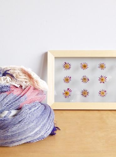 floweradjusgment-marguerite-10