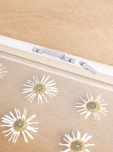 floweradjusgment-marguerite-5