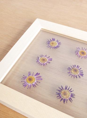 floweradjusgment-marguerite-8