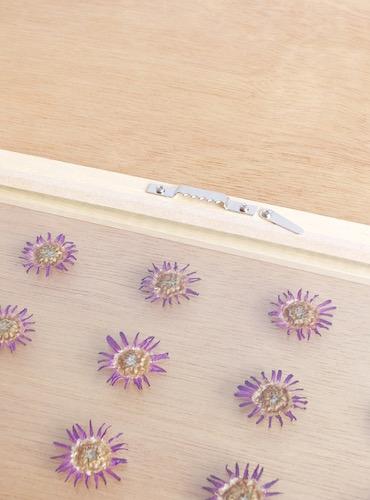 floweradjusgment-marguerite-9